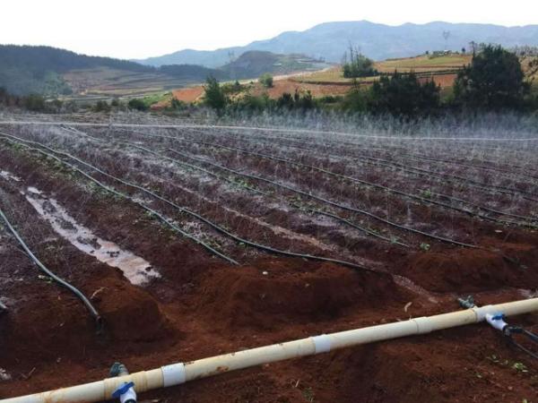 我愛短文學網首發农业水利工程的作用及其发展策略分析